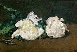 Branch of White Peonies and Secateurs, 1864 by Manet | Painting Reproduction