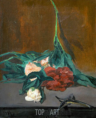 Stem of Peonies and Secateurs, 1864 | Manet | Painting Reproduction