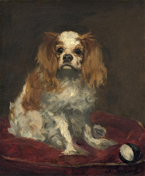 A King Charles Spaniel, c.1866 | Manet | Painting Reproduction