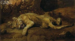 The Lioness, Undated von Frans Snyders | Gemälde-Reproduktion
