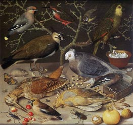 Still Life of Birds and Insects | Georg Flegel | Painting Reproduction