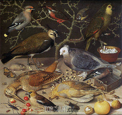Still Life of Birds and Insects, 1637 | Georg Flegel | Gemälde Reproduktion