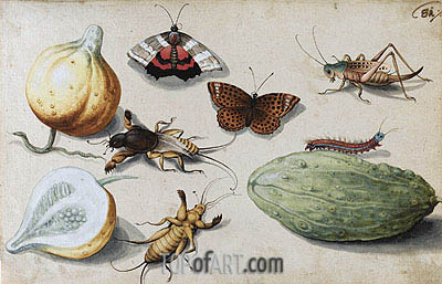 Butterfly, Beetle, Grasshopper and Caterpillar, undated | Georg Flegel | Gemälde Reproduktion
