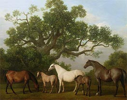 Mares and Foals under an Oak Tree | George Stubbs | Painting Reproduction