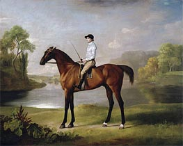 The Marquess of Rockingham's 'Scrub', 1762 by George Stubbs | Painting Reproduction