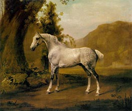 A Grey Stallion In a Landscape | George Stubbs | Painting Reproduction