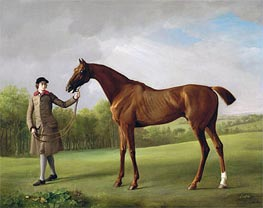 Lustre, held by a Groom | George Stubbs | Painting Reproduction