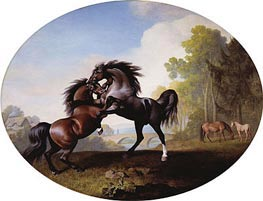 Stallions Fighting, 1781 by George Stubbs | Painting Reproduction