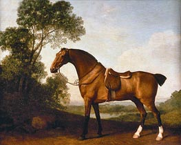 A Saddled Bay Hunter, 1786 by George Stubbs | Painting Reproduction