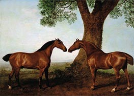 Two Bay Hunters by a Tree | George Stubbs | Painting Reproduction