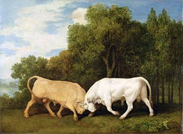 Bulls Fighting | George Stubbs | Gemälde Reproduktion