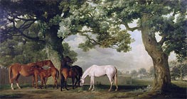 Mares and Foals Beneath Large Oak Trees | George Stubbs | Painting Reproduction