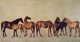 Mares and Foals without a Background | George Stubbs | Gemälde Reproduktion