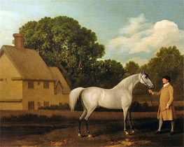 'Gimcrack', 1770 by George Stubbs | Painting Reproduction