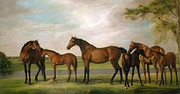 Mares and Foals Disturbed by an Approaching Storm, c.1764/66 von George Stubbs | Gemälde-Reproduktion