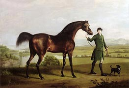 A Horse Belonging to the Rt. Honourable Lord Grosvenor called 'Bandy' from His Crooked Leg, 1763 von George Stubbs | Gemälde-Reproduktion