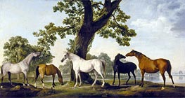Five Brood Mares, undated von George Stubbs | Gemälde-Reproduktion