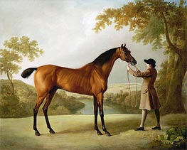 Tristram Shandy, a Bay Racehorse Held by a Groom in an Extensive Landscape, c.1760 von George Stubbs | Gemälde-Reproduktion