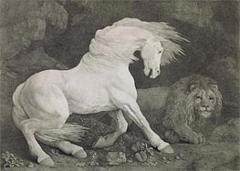 A Horse Affrighted by a Lion, 1788 von George Stubbs | Gemälde-Reproduktion