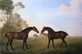 Two Hunters out at Grass, 1789 von George Stubbs | Gemälde-Reproduktion