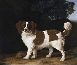 Fanny, the Favourite Spaniel of Mrs. Musters, Standing in a Wooded Landscape, 1777 von George Stubbs | Gemälde-Reproduktion
