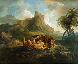 Leopards at Play, c.1763/68 by George Stubbs | Painting Reproduction