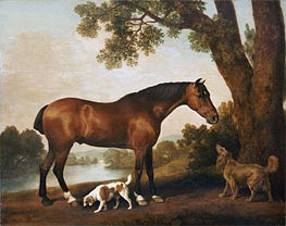 A Bay Hunter, a Springer Spaniel and a Sussex Spaniel, 1782 von George Stubbs | Gemälde-Reproduktion