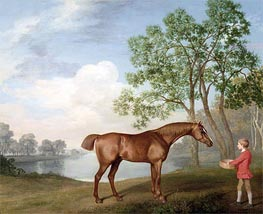 Pumpkin with a Stable-Lad, 1774 von George Stubbs | Gemälde-Reproduktion