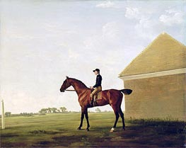 Turf, c.1765 by George Stubbs | Painting Reproduction