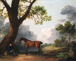 The Third Duke of Dorset's Hunter with a Groom and a Dog, 1768 by George Stubbs | Painting Reproduction