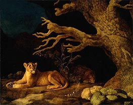 Lion and Lioness, 1771 by George Stubbs | Painting Reproduction
