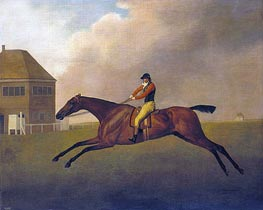 Baronet with Samuel Chifney up | George Stubbs | Painting Reproduction