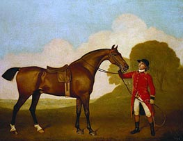 A Bay Horse with a Groom, 1791 von George Stubbs | Gemälde-Reproduktion