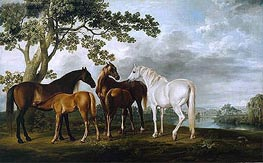 Mares and Foals in a River Landscape | George Stubbs | Painting Reproduction