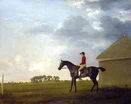 Gimcrack, with John Pratt up, on Newmarket Heath, c.1765 von George Stubbs | Gemälde-Reproduktion