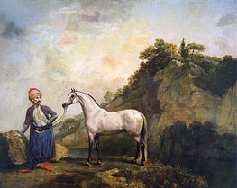 Gray Arabian with a Groom | George Stubbs | Painting Reproduction