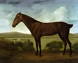 Brown Horse in a Hilly Landscape | George Stubbs | Painting Reproduction