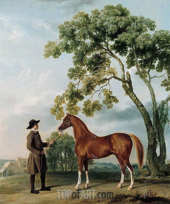 Lord Grosvenor's Arabian with a Groom, c.1765 | George Stubbs | Painting Reproduction