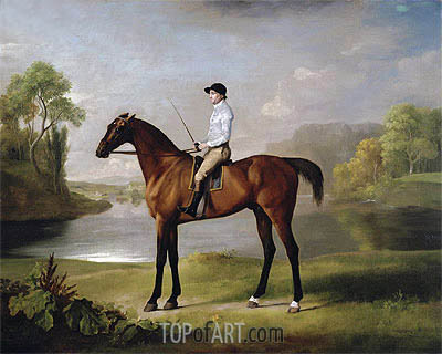 The Marquess of Rockingham's 'Scrub', 1762 | George Stubbs | Painting Reproduction