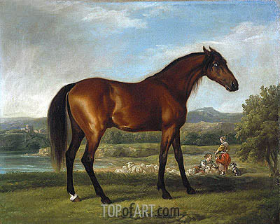 Hollyhock, c.1765 | George Stubbs | Painting Reproduction