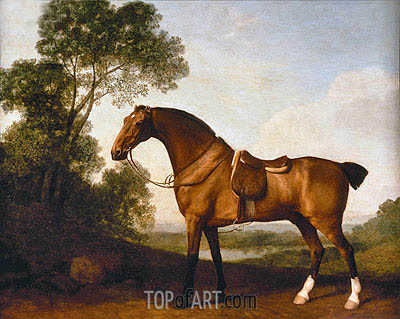 A Saddled Bay Hunter, 1786 | George Stubbs | Gemälde Reproduktion