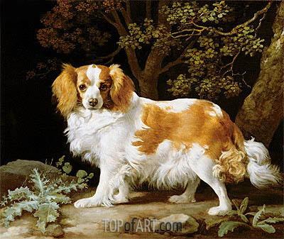 A Liver and White King Charles Spaniel in a Wooded Landscape, 1776 | George Stubbs | Gemälde Reproduktion