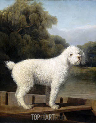 White Poodle in a Punt, c.1780 | George Stubbs | Painting Reproduction