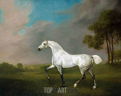 A Grey Horse, 1793 | George Stubbs | Painting Reproduction