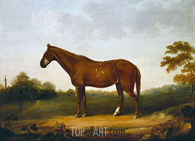 A Chestnut Cob in the Park at Gibside, c.1800/50 | George Stubbs | Painting Reproduction