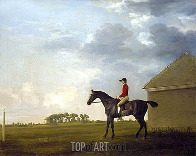 Gimcrack, with John Pratt up, on Newmarket Heath, c.1765 | George Stubbs | Painting Reproduction