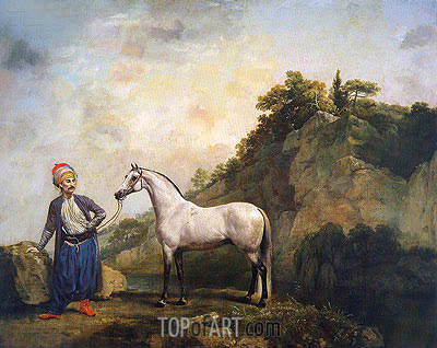 Gray Arabian with a Groom, c.1765/66 | George Stubbs | Painting Reproduction