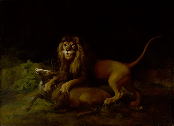 A Lion Attacking a Stag, c.1765/66 | George Stubbs | Painting Reproduction