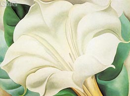 White Trumpet Flower, 1932 by O'Keeffe | Painting Reproduction