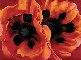 Oriental Poppies, 1928 by O'Keeffe | Painting Reproduction